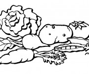 Coloriage Légumes Potager