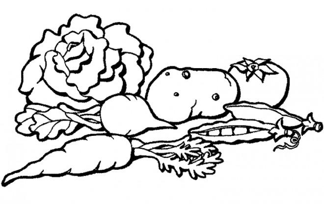 Coloriage et dessins gratuits Légumes Potager à imprimer