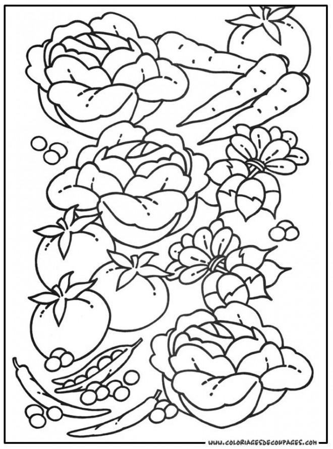 Coloriage l gumes sains dessin gratuit imprimer - Dessin de potager ...