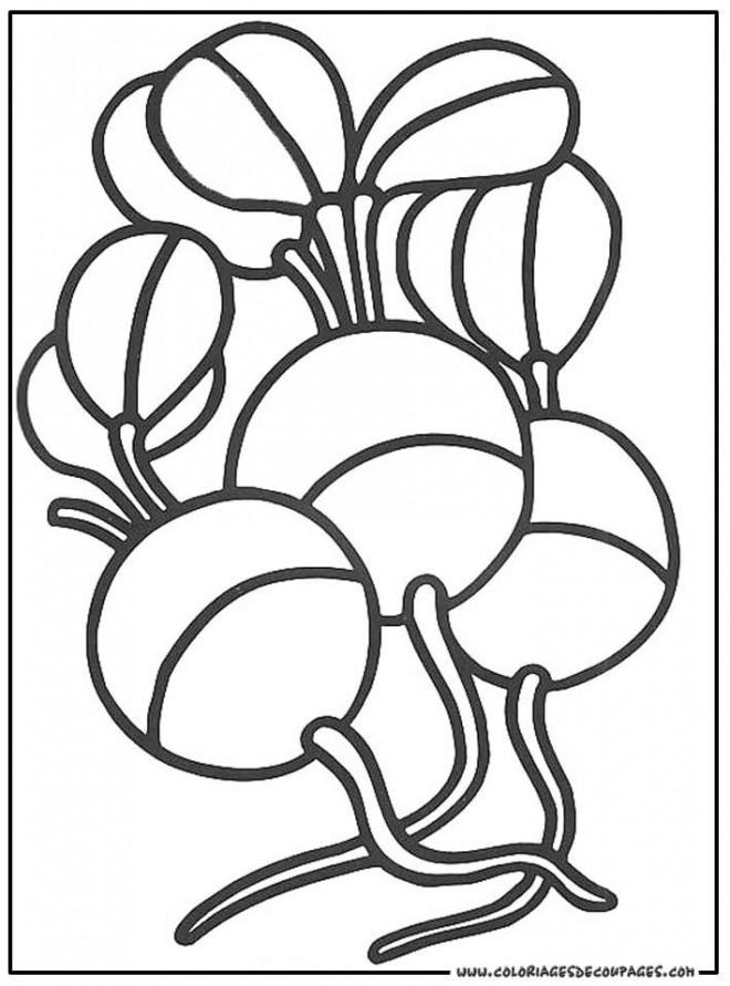 Coloriage et dessins gratuits Légumes sains à décorer à imprimer