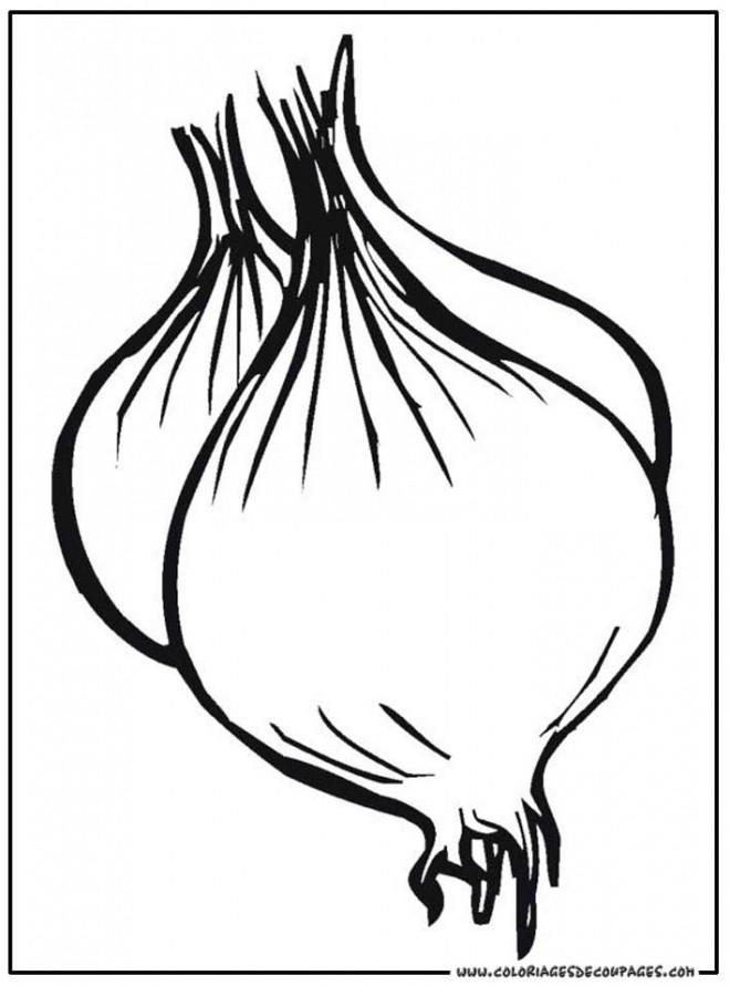 Coloriage et dessins gratuits Oignon  Légume en noir à imprimer