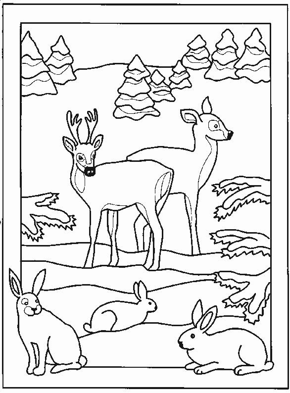 Coloriage et dessins gratuits Animaux dans la Forêt facile à imprimer