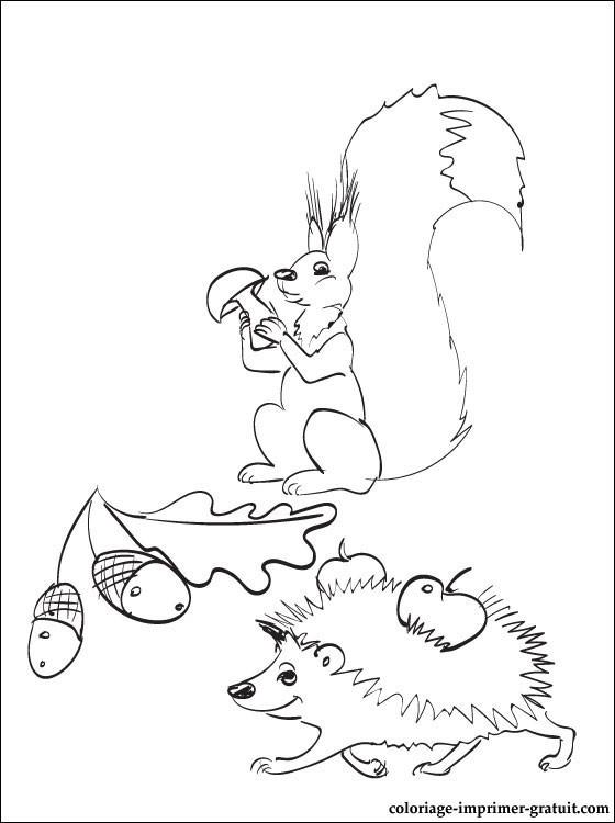 Coloriage et dessins gratuits Animaux et Fruits de la  forêt à imprimer