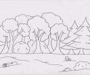 Coloriage Forêt ay crayon
