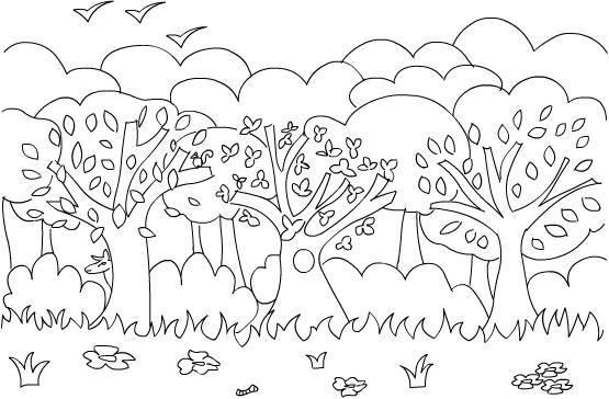 Coloriage et dessins gratuits Forêt d'arbres à imprimer