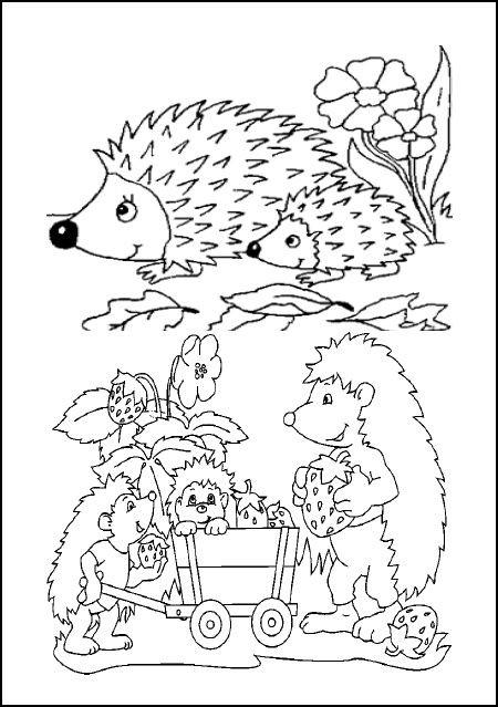 Coloriage et dessins gratuits Hérisson en famille dans La forêt à imprimer