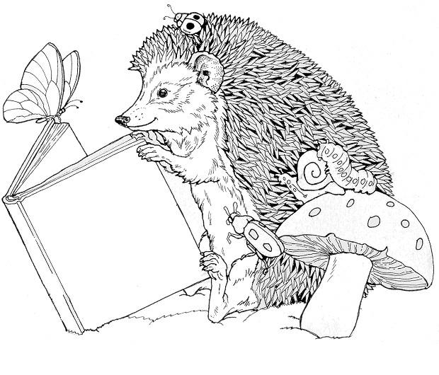 Coloriage et dessins gratuits hérisson Forêt à imprimer