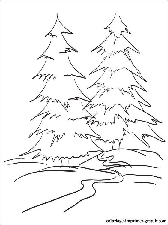 Coloriage et dessins gratuits La Forêt en Hiver à imprimer