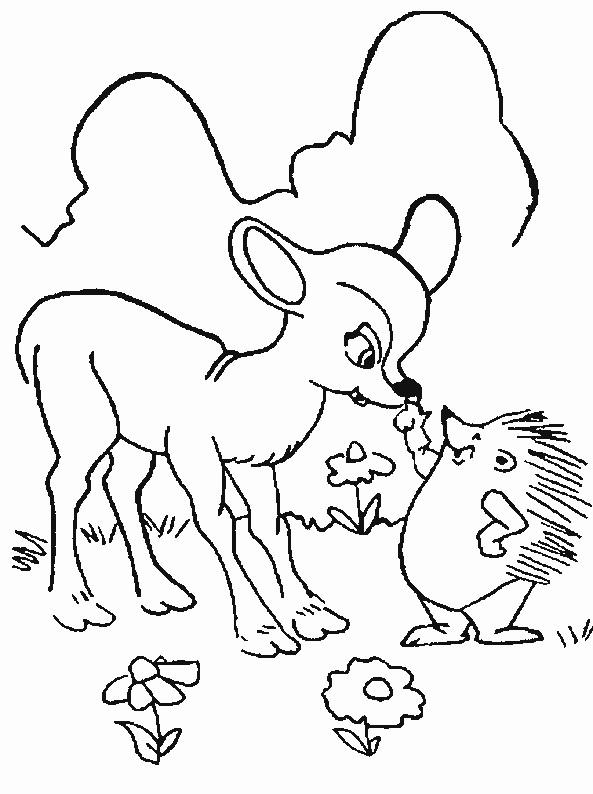 Coloriage et dessins gratuits Le Hérisson et le petit Cerf  forêt à imprimer