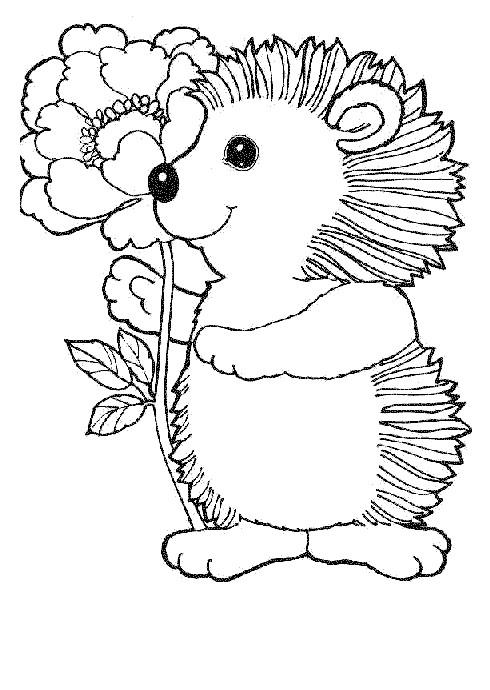 Coloriage et dessins gratuits Le hérisson mignon forêt à imprimer