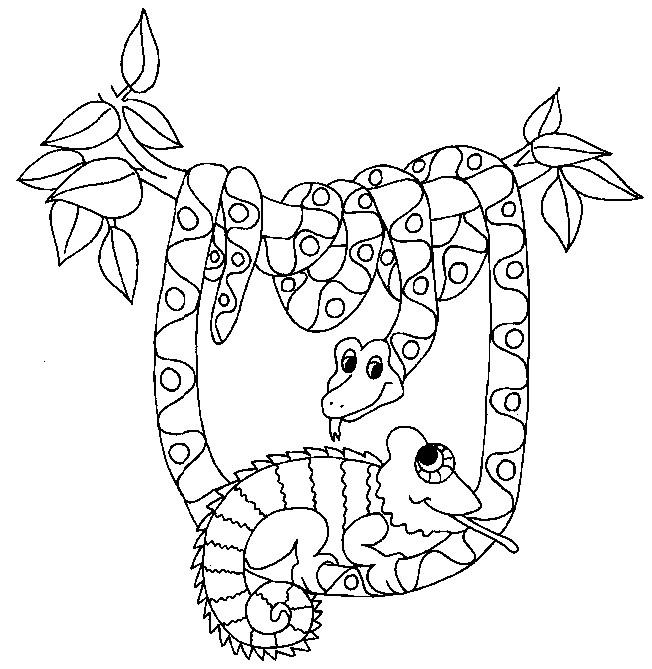 Coloriage et dessins gratuits le Serpent dans la forêt à imprimer