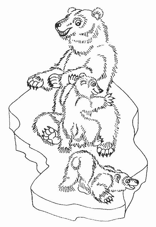 Coloriage et dessins gratuits Ours en famille de forêt à imprimer