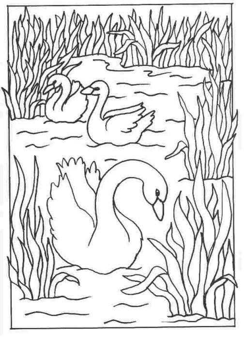 Coloriage et dessins gratuits Lac à découper à imprimer