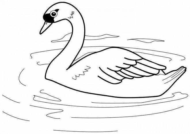 Coloriage et dessins gratuits Lac Canard couleur à imprimer