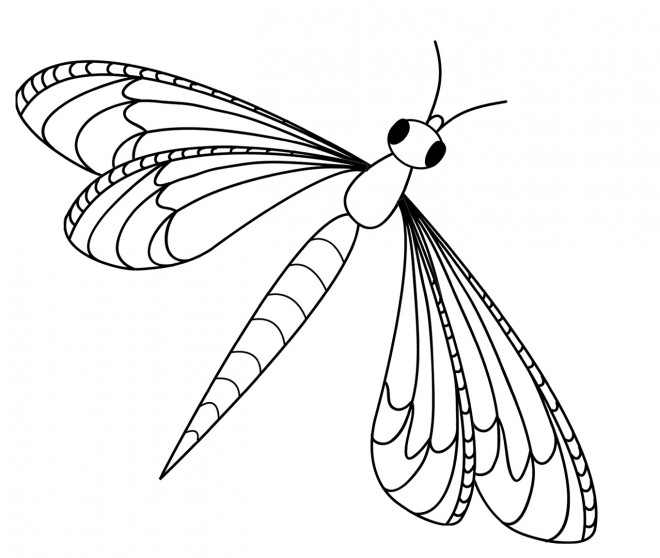 Coloriage libellule 13 dessin gratuit imprimer - Dessin dxf gratuit ...