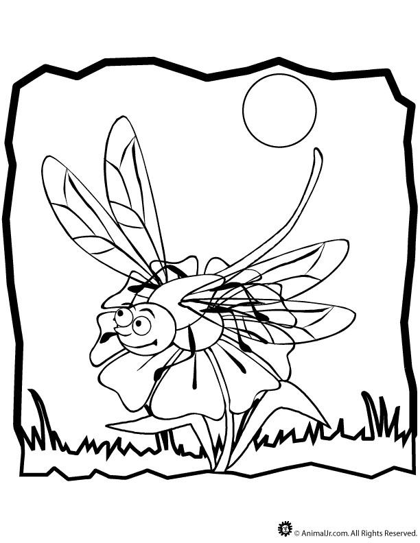 Coloriage et dessins gratuits Libellule 59 à imprimer