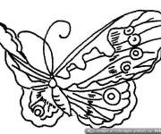 Coloriage admirable Papillon qui vole