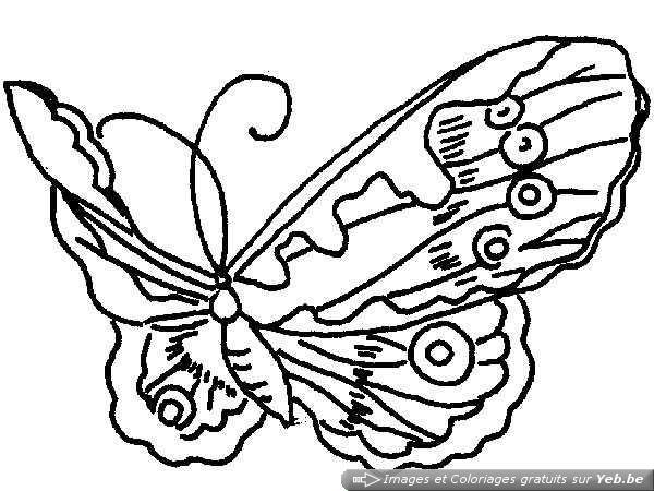 Coloriage et dessins gratuits admirable Papillon qui vole à imprimer