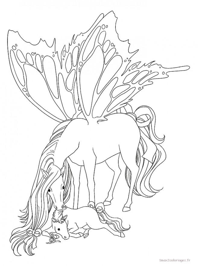 Coloriage et dessins gratuits Cheval Papillon à imprimer