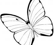 Coloriage Joli Papillon vecteur en noir