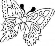 Coloriage Le Papillon en toute beauté