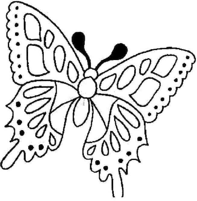 Coloriage et dessins gratuits Le Papillon en toute beauté à imprimer