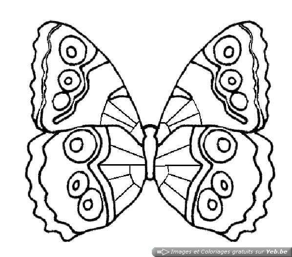 Coloriage et dessins gratuits Magnifique Papillon à décorer à imprimer