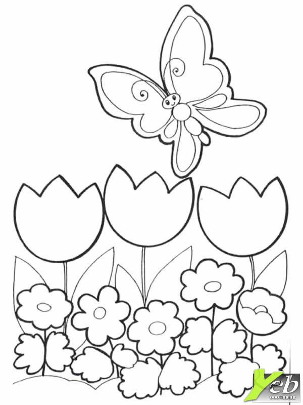 Coloriage et dessins gratuits Magnifique Papillon en vol à imprimer