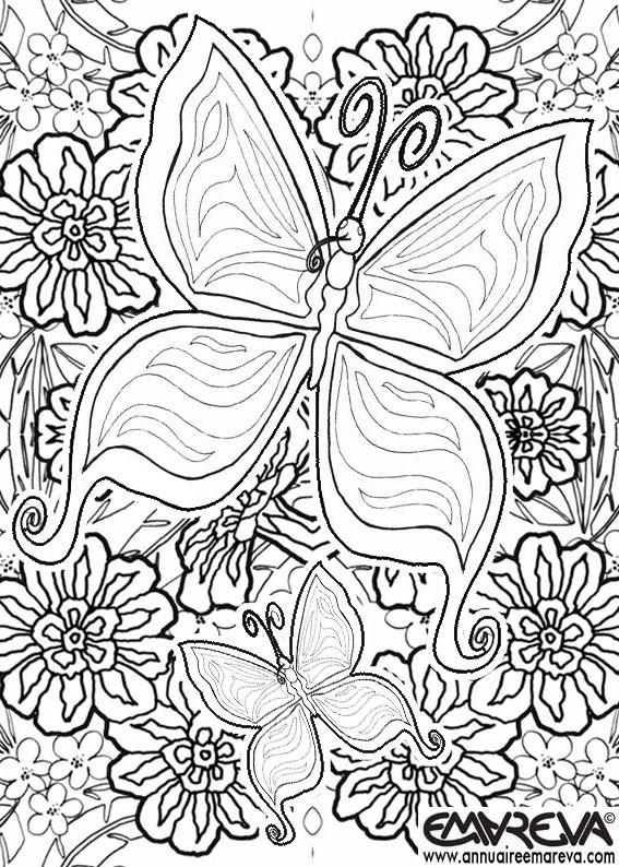 Coloriage magnifique papillon et les fleurs dessin gratuit imprimer - Coloriage magnifique ...