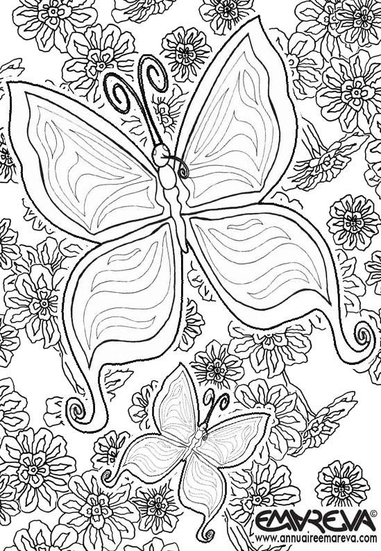 Coloriage et dessins gratuits Magnifique Papillon mandala à imprimer