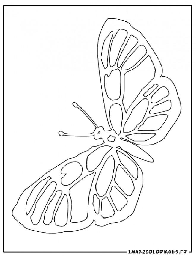 Coloriage et dessins gratuits Magnifique Papillon ouvrant ses ailes à imprimer