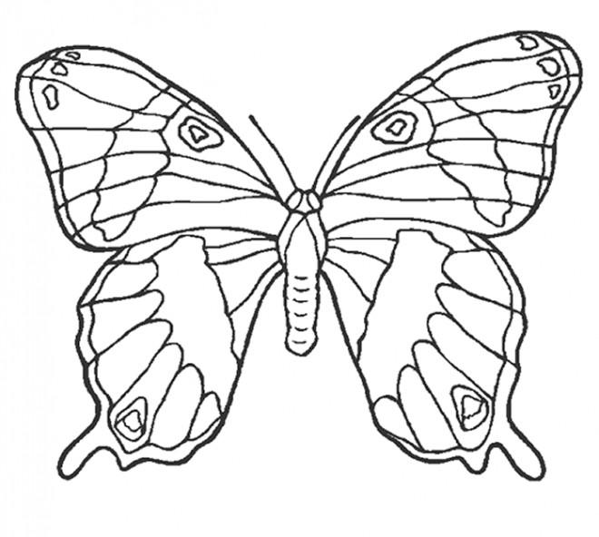 Coloriage et dessins gratuits Magnifique Papillon stylisé à imprimer