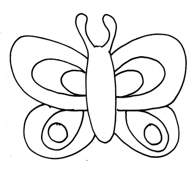 Coloriage et dessins gratuits Papillon et ses antennes à imprimer