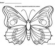 Coloriage Papillon splendide