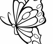 Coloriage et dessins gratuit superbe papillon vecteur à imprimer