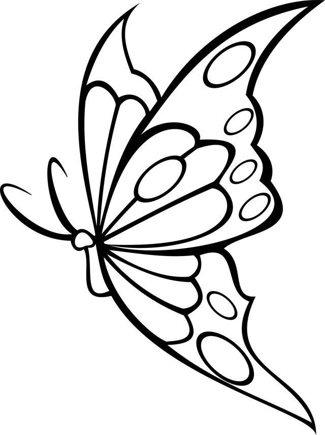 Coloriage et dessins gratuits superbe papillon vecteur à imprimer