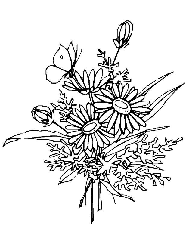 Coloriage Bouquet De Fleur Marguerite Dessin Gratuit à Imprimer