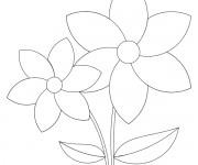 Coloriage dessin  Fleur 47