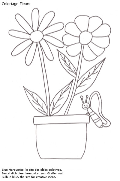 Coloriage et dessins gratuits Les fleurs Marguerites et le papillon à imprimer