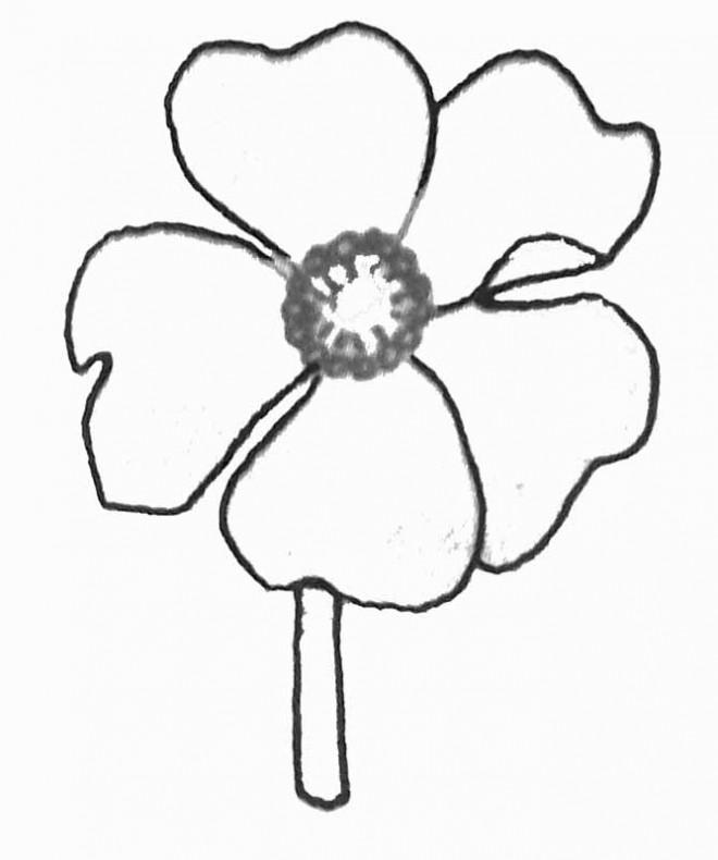 Coloriage et dessins gratuits Marguerite couleur à imprimer