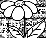 Coloriage et dessins gratuit Marguerite en noir et blanc à imprimer