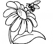 Coloriage et dessins gratuit Marguerite et Abeille à imprimer