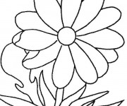 Coloriage Marguerite facile