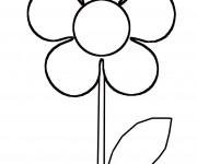 Coloriage et dessins gratuit modèle de Fleur Marguerite à imprimer
