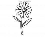 Coloriage et dessins gratuit Une fleur Marguerite à imprimer