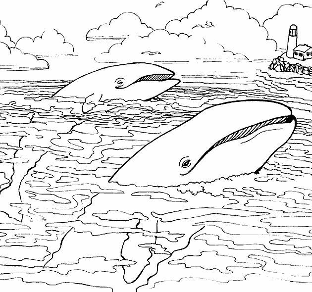 Coloriage et dessins gratuits Baleines sur la surface de Mer à imprimer
