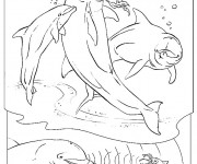 Coloriage dessin  Dauphin 37