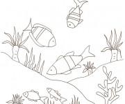 Coloriage Fond Marin plein de poissons