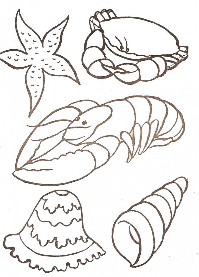Coloriage et dessins gratuits Fruits de Mer stylisé à imprimer