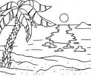 Coloriage et dessins gratuit Palmier sur La plage à imprimer